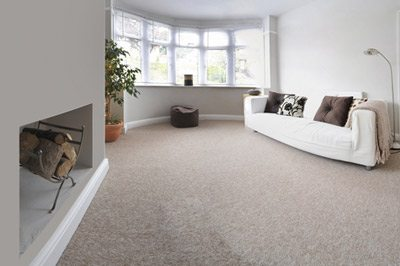 Carpet Cleaning Dublin - Upholstery Cleaning Service - Pink Lady